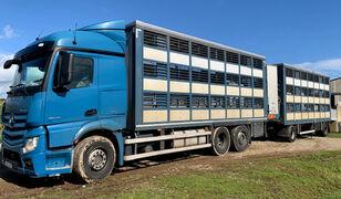 camião de transporte de gado MERCEDES-BENZ Actros 2548 for pigs transport + reboque transporte animais