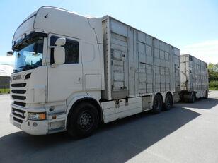 camião de transporte de gado SCANIA R560 + reboque transporte animais